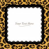 stock photo of girlie  - A yellow and brown leopard spotted frame with a dark lace trim - JPG