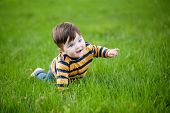 little boy crawling on a green lawn