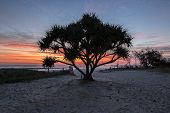 Currumbin Beach Sunrise, Gold Coast, Australia