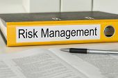 A yellow folder with the label Risk Management
