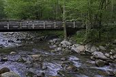 Bridge over river in Smoky Mountains