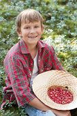 Smiling Boy Holding Hat Full Of Red Wildberries