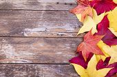 Autumn leaves over aged wooden background