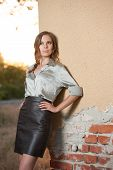 pic of blouse  - Elegant glamour woman wearing brown skirt and blouse outdoor in the park at sunset - JPG