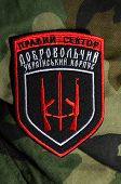 Kiev,Ukraine.Oct 16.Illustrative editorial. Pro-Ukrainian nationalist formation Right Sector  chevron..At October 16,2014 in Kiev, Ukraine