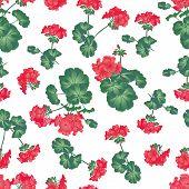 Soft red geranium seamless pattern