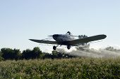 Crop Duster Action