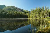 Pond in Tatra National Park