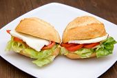 Sandwiches on plate over wood close