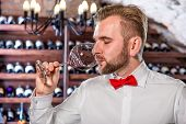image of wine cellar  - Sommelier tasting wine in the wine cellar - JPG