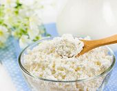 Fresh Cottage Cheese In Glass Bowl