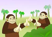 Funny Monkeys with Bananas.