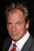 LOS ANGELES - NOV 11:  Julian Sands at the PEN Center USA 24th Annual Literary Awards at the Beverly Wilshire Hotel on November 11, 2014 in Beverly Hills, CA