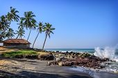 foto of indian blue  - Tropical Indian village with coconut palm trees near the road and blue ocean in Varkala - JPG