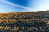 image of plowed field  - Beautiful plowed field autumnal landscape photographed in nice morning light under blue sky - JPG
