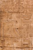 foto of hieroglyph  - old egypt hieroglyphs carved on the stone - JPG