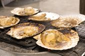 stock photo of scallops  - Soy sauce poured on scallops which baked in charcoal fire - JPG