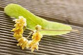 pic of linden-tree  -  linden flowers on a wooden background - JPG