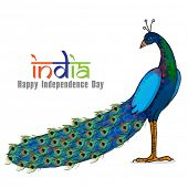 pic of indian independence day  - Beautiful national bird Peacock on shiny background for Indian Independence Day celebration - JPG