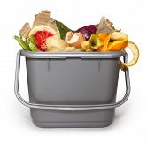 stock photo of discard  - Isolated Kitchen composting bin with all manner of compostable things - JPG