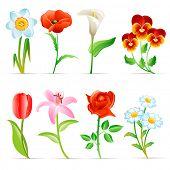 Постер, плакат: Набор цветов