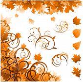 Постер, плакат: Осенние украшения