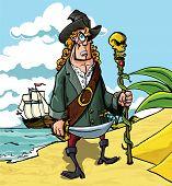Cartoon Pirate On A Beach