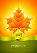 autumn yellow leaf in light sunny rays with green ribbon vector illustration