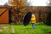 Постер, плакат: Little Boy Walking At Rainy Cloudy Autumn Weather