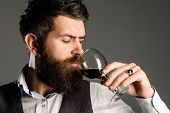 Berded Man Tasting Glass Of Wine. Winetasting And Degustation Concept. New Year Party. Serious Man D poster