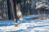 Jogging In Winter. Running Through The Snow. Run Forest Snow. poster