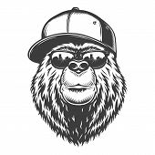 Vintage Monochrome Stylish Bear Head In Baseball Cap And Sunglasses Isolated Vector Illustration poster