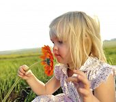 Adorable little girl smells the wild flowers in the meadow