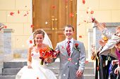 image of wedding couple  - just married couple is being cogratulating by their guests - JPG
