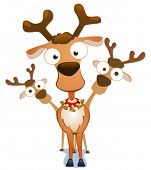 Vector illustration of cartoon deers