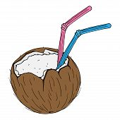 Coconut With A Cocktail Straw Icon. Vector Of A Broken Coconut With A Decorative Umbrella For Cockta poster