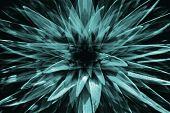 Hallucinations In Shape Of Big Turquoise Surreal Plant With Long Leaves Close Up. Abstract Illusion  poster