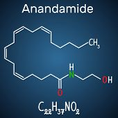 Anandamide Molecule. It Is Endogenous Cannabinoid Neurotransmitter. Structural Chemical Formula And  poster