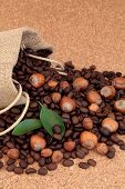 Hazelnut fruit with coffee beans in a hessian sack and loose with leaf sprig over cork background.