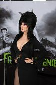 LOS ANGELES - SEP 24:  Cassandra Peterson as Elvira arrives at the