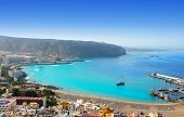Aerial view of Los Cristianos beach in Arona Tenerife Canary Islands