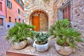Stone pots with palms in front of entrance to typical italian house on narrow cobblestone street in town of Sirmione, Italy.