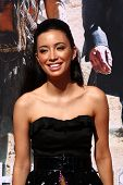 LOS ANGELES - JUN 22:  Christian Serratos  at the World Premiere of