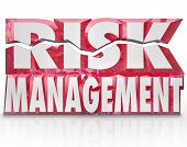 The words Risk Management in red 3d letters to illustrate the need to minimize liability and increas