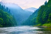 foto of pieniny  - The gorge of mountain river in the morning - JPG
