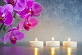 stock photo of tranquil  - Japan zen garden with orchid flower and candle lights - JPG