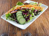 Kleurrijke lommerrijke verse salade