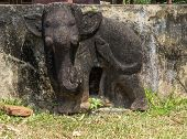 stock photo of champa  - Vietnam Damaged elephant statue on bas relief of Chien Dam Cham tower - JPG