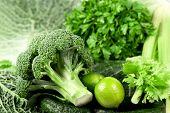 Kohl ein Brokkoli