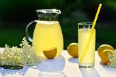 foto of elderflower  - Homemade elderflower juice with lemon on table in a garden - JPG